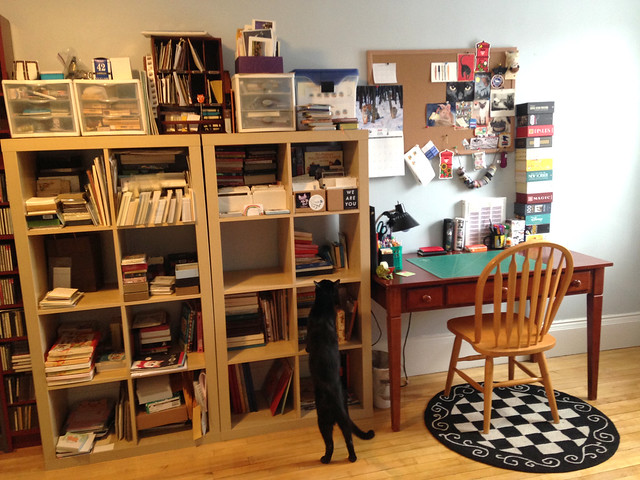 Oberon explores the stationery shelves