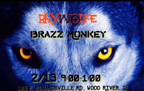 Baywolfe 2-13-16
