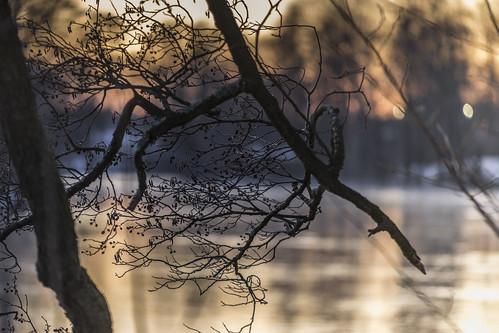 winter light sunset cold color water outdoor dusk norrköping