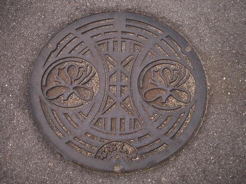P6141133 drain cover