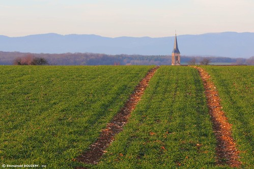blue green church field way landscape vanishingpoint blueline perspective line vosges ruleofthirds