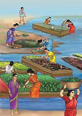 Illustration of a floating garden