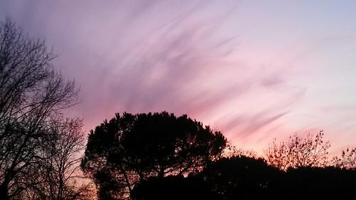 tramonto ingrid.jpg