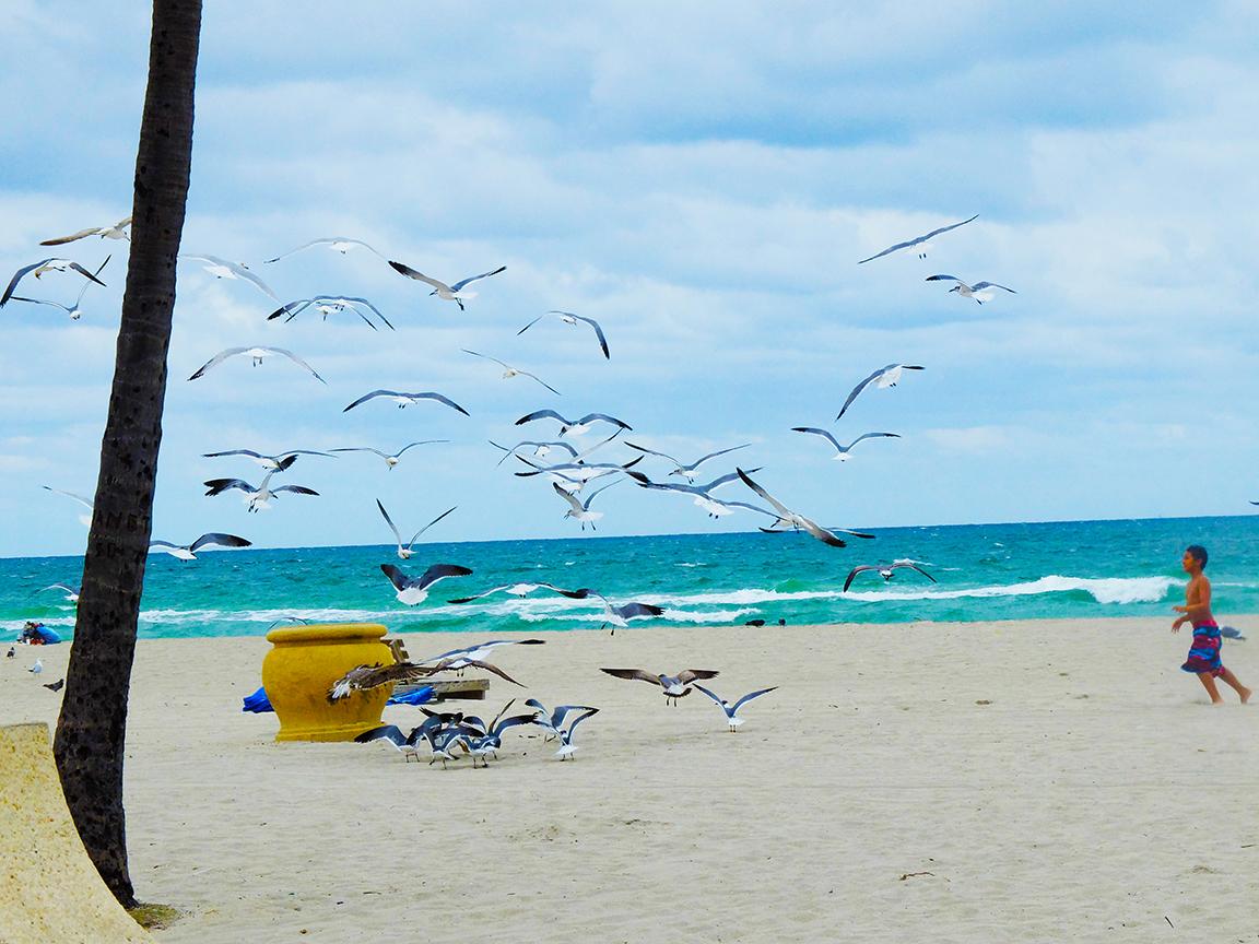 floride-west-palm-beach-(26)