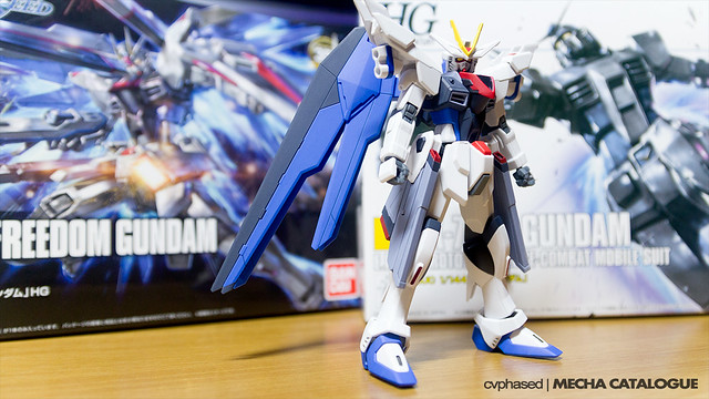 HG Freedom Gundam Flame Feder - Work in Progress #3