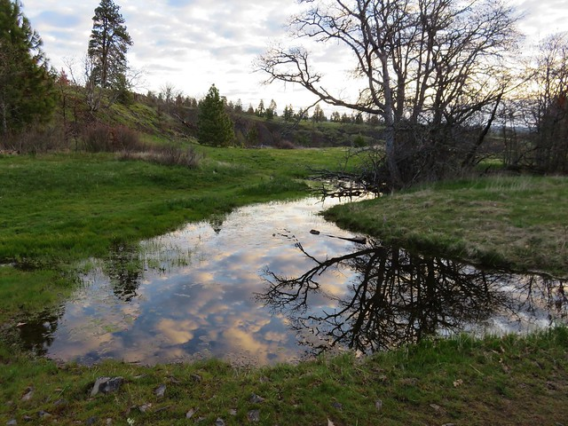 Clouds reflecting in pool of water along the Catherine Creek Trail