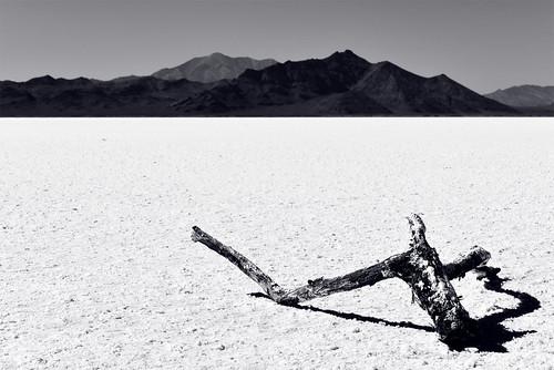 blackandwhite usa monochrome landscape utah nikon unitedstates desert noiretblanc salt greatsaltlake d750 sel paysage minimalist etatsunis bonnevillesaltflats silverislandmountains