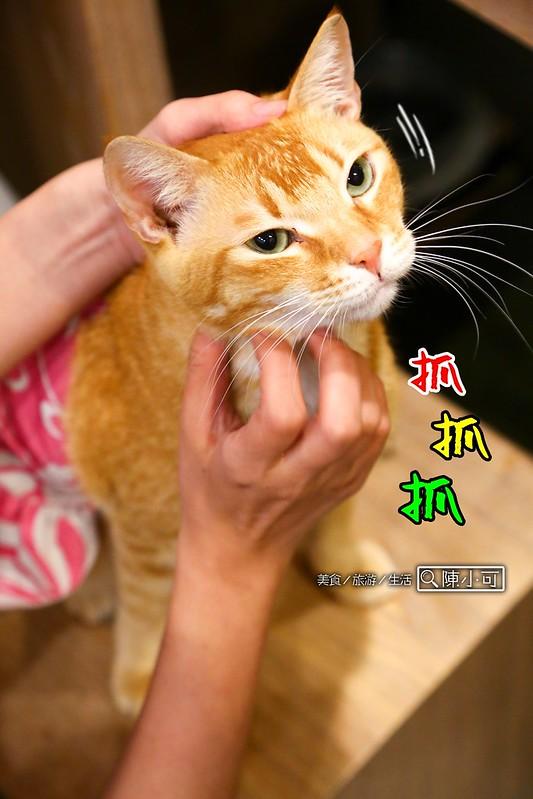 貓故事和食坊-喵喵