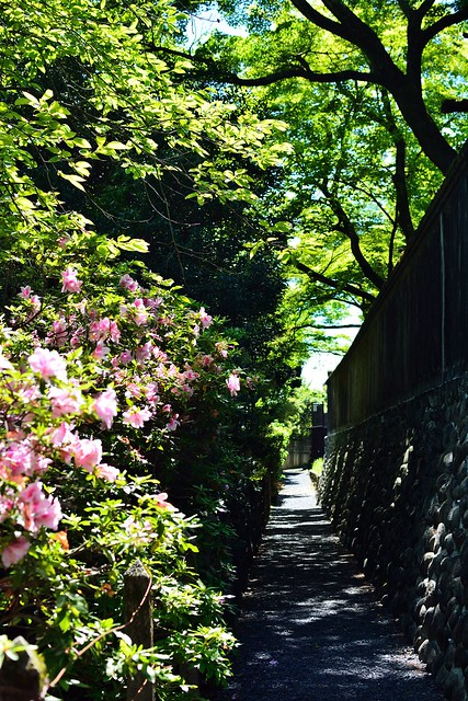 川原町の小路