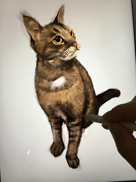 "Digital painting of ""Maru"" the cat on iPad Pro + Apple Pencil + Procreate"