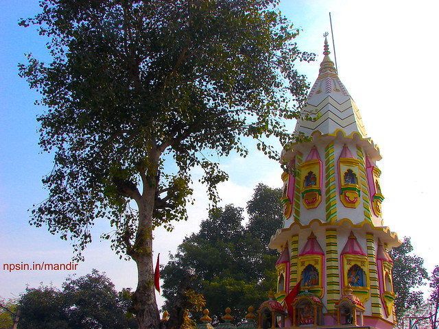 A Full View of Mandir Along with Peepal Tree