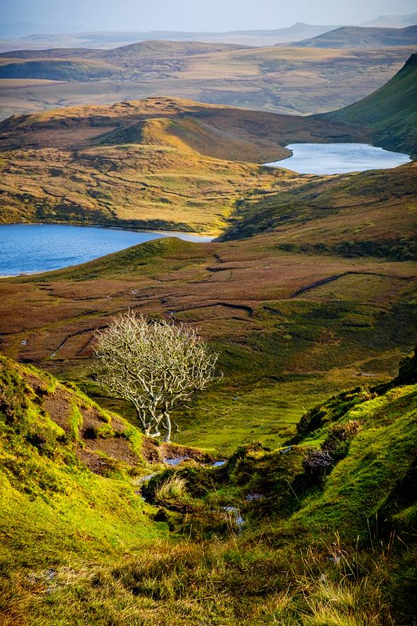 scotland_1015_263