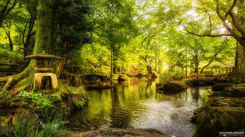 green japan forest garden gifu