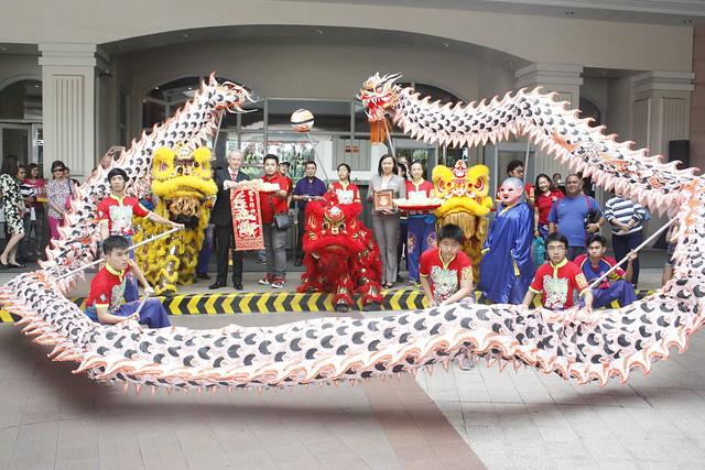 Lion and Dragon Dance 2