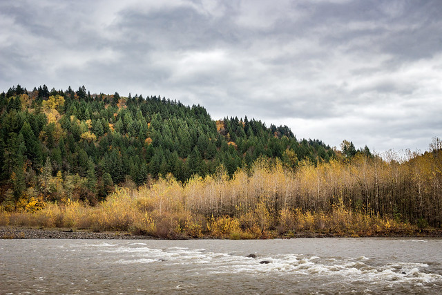 Sandy River, Autumn
