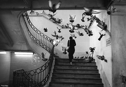 Upstairs por Rui Palha