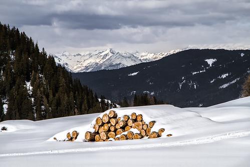 Saltria [Alpe di Siusi - Italy]