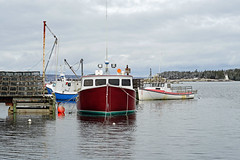 NS-00268 - Indian Harbour