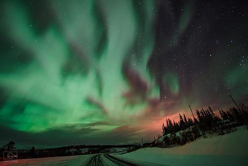 #yycphotographer #christyturnerphotography #auroraboreale #auroraborealis #auroraborealhunters #aurora #aurorasx #northernlights #northernlight #yukon #ig_canada #instagood #instanight