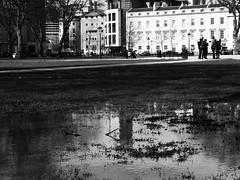 Bristol puddles