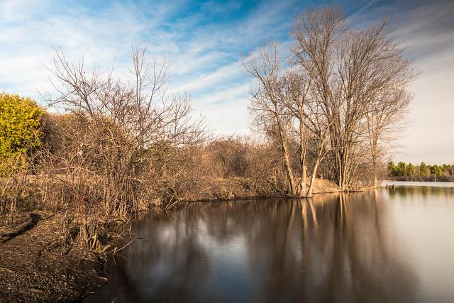 Mud Lake In Spring