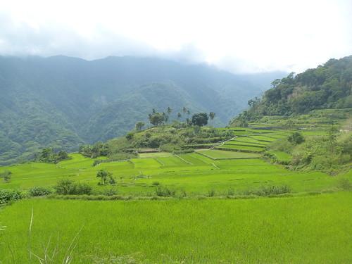 P16-Luzon-Tabuk-Tinglayen-route (30)