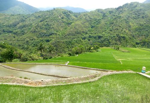 P16-Luzon-Tinglayen-Bontoc-route (8)