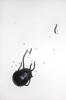 scarabee_artwork (c) by Sylvain Le Corre