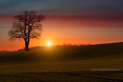 Sunset en France - Photo of Frasnay-Reugny