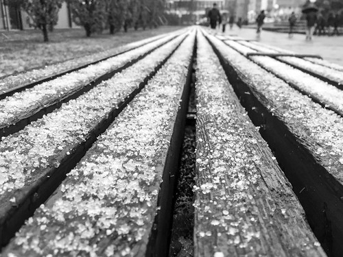 15/366 – Heidelberg, im Neuenheimer Feld. That snow went away after 20 minutes...