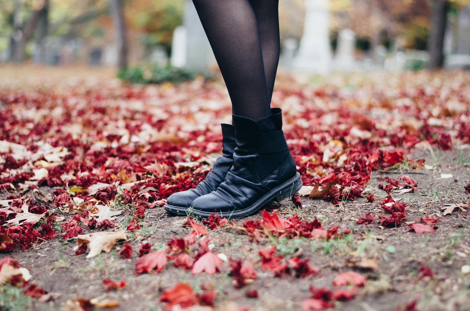 Free People Fall in Mount Auburn Cemetery on juliettelaura.blogspot.com
