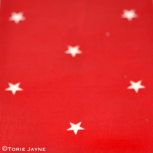 Red & White Star Oilcloth