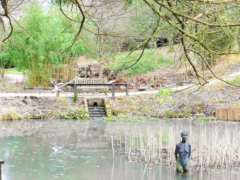 Hillier Gardens Pond