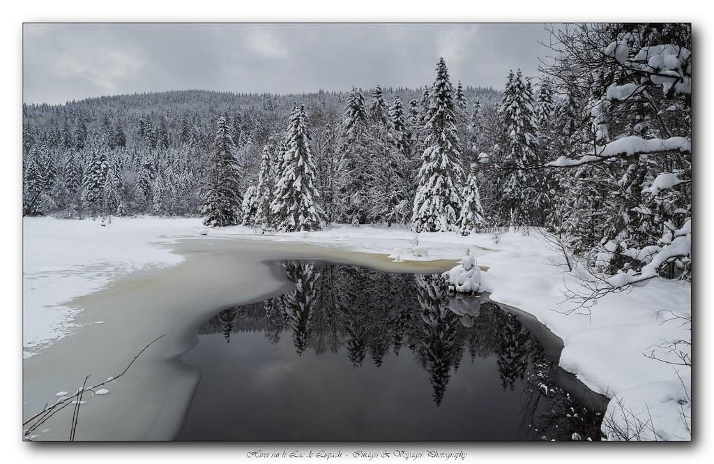 L'hiver est encore là ! 25334330333_77736022f3_b