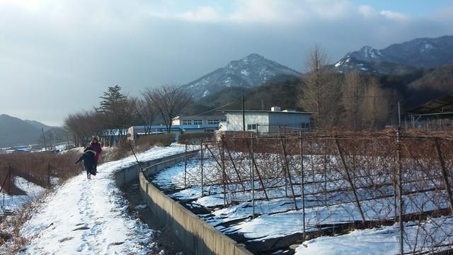 학부모로 복학하다: 화북초등학교