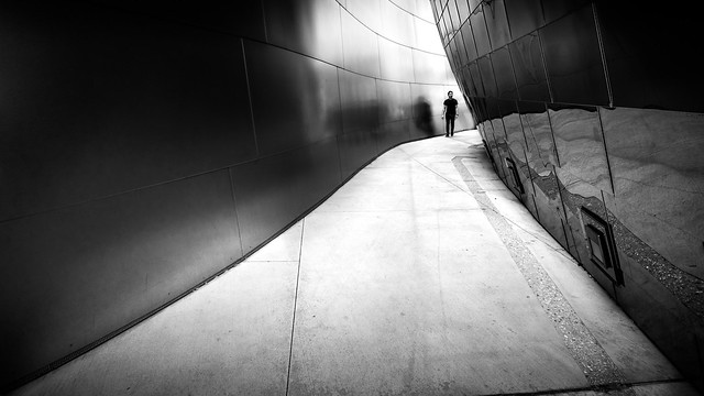 Walt Disney concert hall - Los Angeles, United States - Black and white street photography