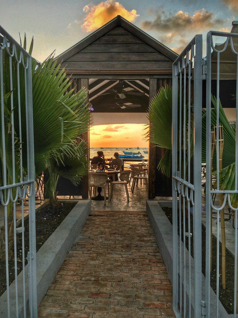 The Little Magpie Southern Palms Barbados Review 5