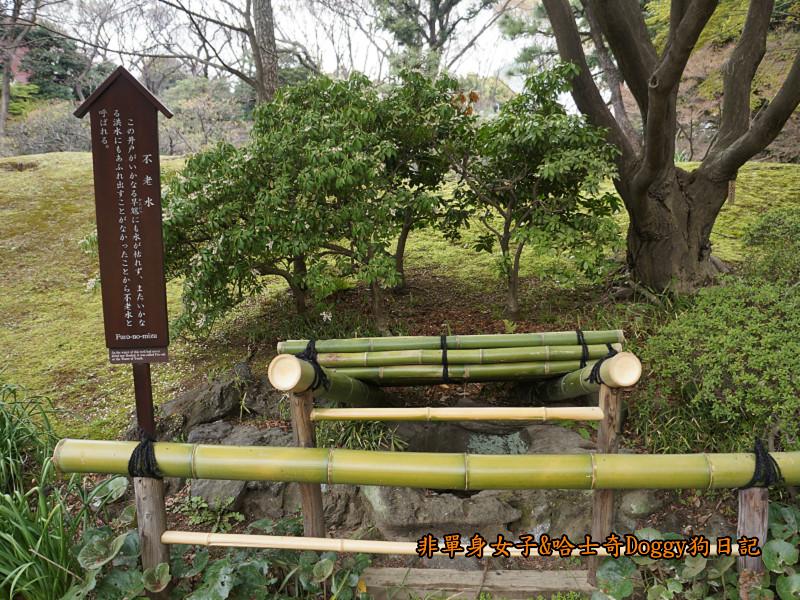 日本自由行小石川後樂園&東京巨蛋城18