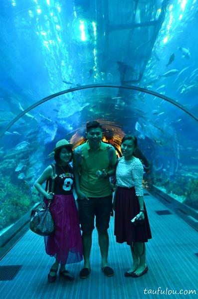 Dubai Aquarium (5)