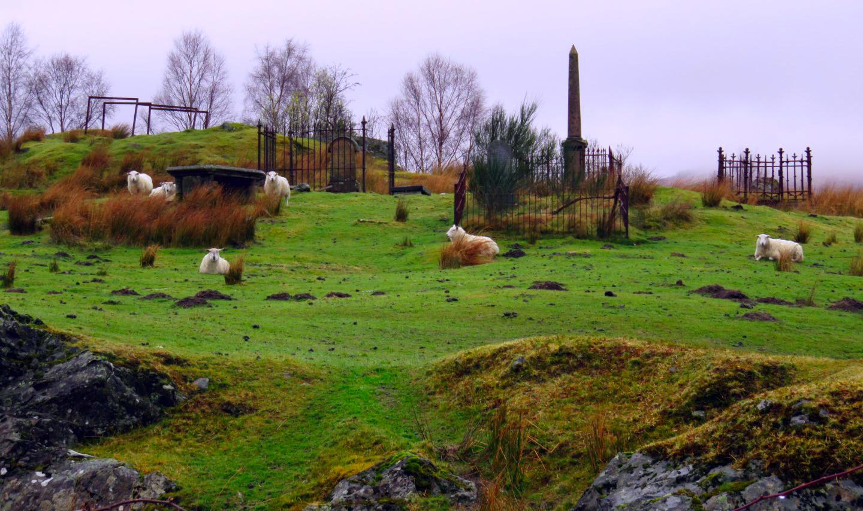 Ruta por Escocia en 4 días escocia en 4 días - 26549933522 8677b95d7e o - Visitar Escocia en 4 días