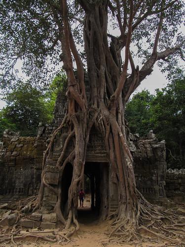 Angkor: le temple Ta Som