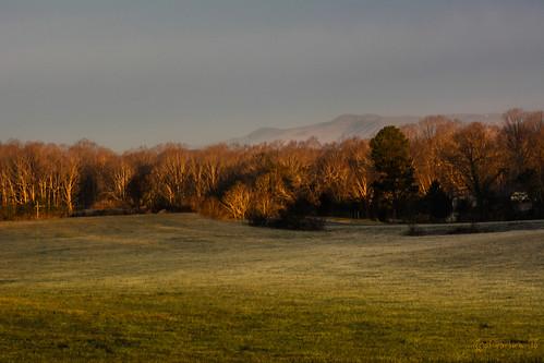 trees winter sky mountains composition sunrise landscape us nikon unitedstates tripod northcarolina telephoto pasture cherryville cherryvillenc naturenc