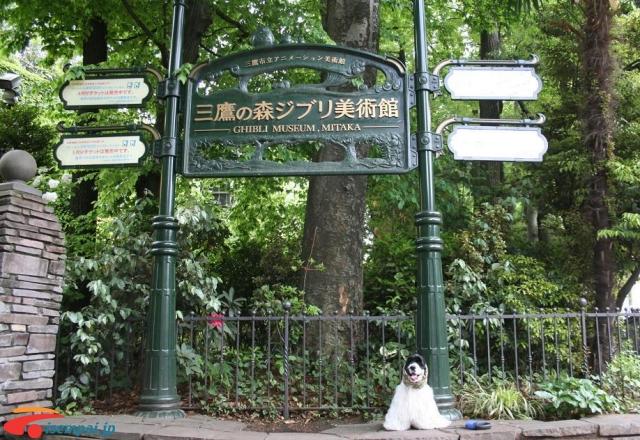 Những điểm hẹn hò Những điểm hẹn hò lãng mạn nhất Tokyo Phần 1 24344447816 65ee5f53f0 o