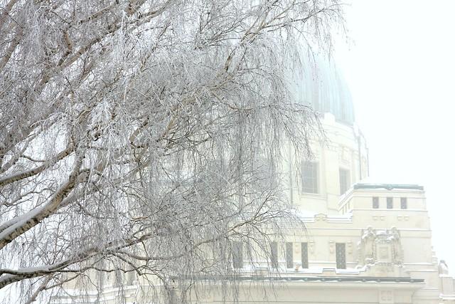 fotografischdurchdiejahreszeiten_winter_04