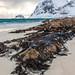 Haukland beach, Lofoten archipel