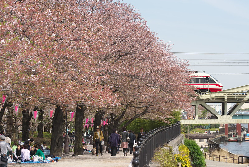Tokyo Train Story 東武スカイツリーライン 2016年4月9日