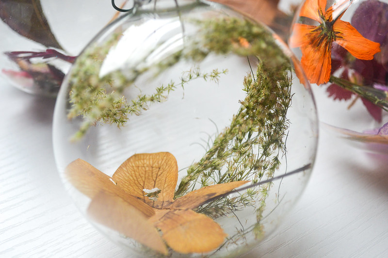 Dried Flower Ornament Display