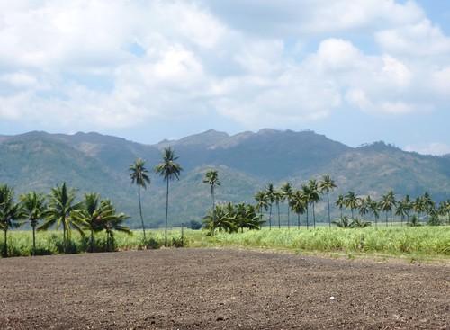 P16-Negros-San Carlos-Dumaguete-Route (44)