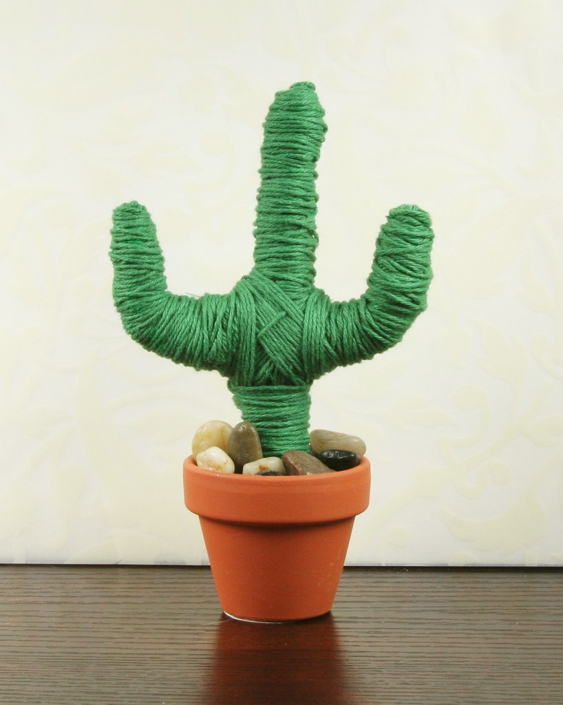 Twine Cacti | shirley shirley bo birley Blog