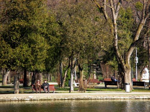 park lake central lac romania transylvania parc transilvania kolozsvar cluj clujnapoca roumanie 2016 erdély parcul erdely kolozsvár ardeal românia klausenburg parculsimionbarnutiu